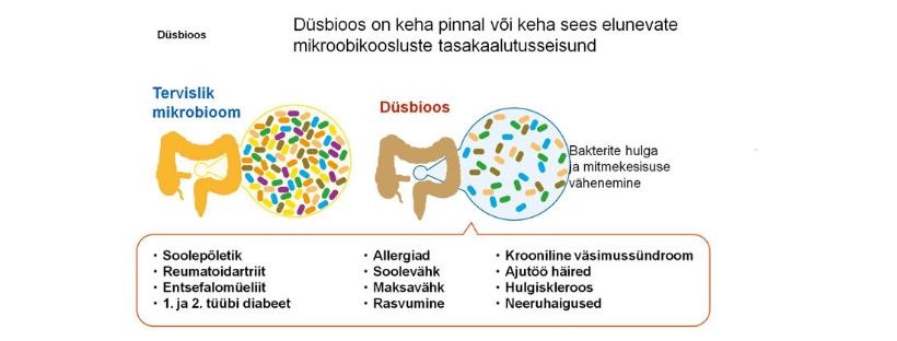 Düsbioos – tõsiste haiguste ettekuulutaja